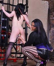Mistress Jemstone uncages Vixen to whip and dildo pound cunt